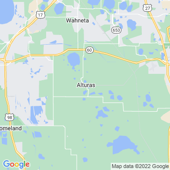 Alturas,fl- map, population, zip codes, coutnies, area codes, time zones, households, income, news, weather, metro areas, local time at localistica.com