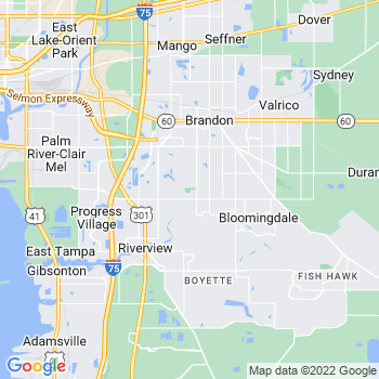 Brandon,fl- map, population, zip codes, coutnies, area codes, time zones, households, income, news, weather, metro areas, local time at localistica.com
