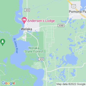 32193 Welaka,FL- map, population, zip codes, coutnies, area codes, time zones, households, income, news, weather, metro areas, local time at localistica.com