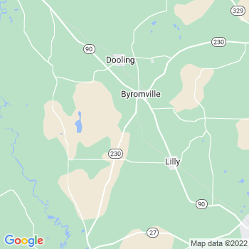 Byromville,ga- map, population, zip codes, coutnies, area codes, time zones, households, income, news, weather, metro areas, local time at localistica.com