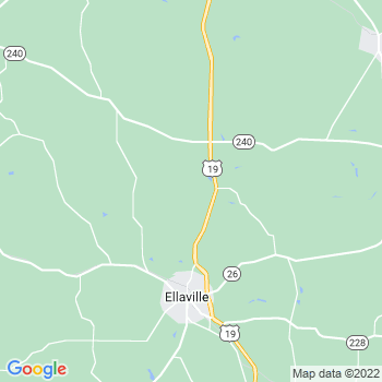 Ellaville,ga- map, population, zip codes, coutnies, area codes, time zones, households, income, news, weather, metro areas, local time at localistica.com