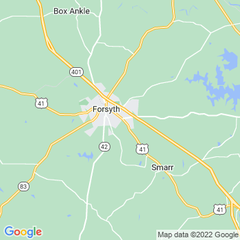 Forsyth,ga- map, population, zip codes, coutnies, area codes, time zones, households, income, news, weather, metro areas, local time at localistica.com
