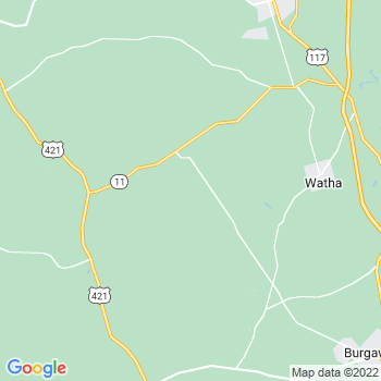 Willard,nc- map, population, zip codes, coutnies, area codes, time zones, households, income, news, weather, metro areas, local time at localistica.com