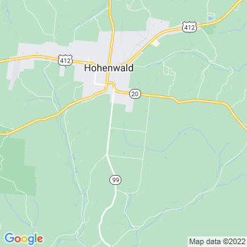 38462 Hohenwald,TN- map, population, zip codes, coutnies, area codes, time zones, households, income, news, weather, metro areas, local time at localistica.com