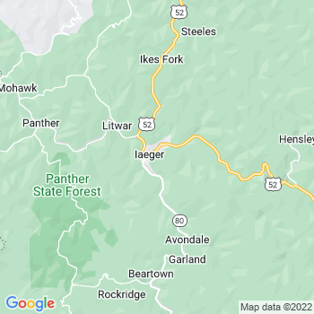 Iaeger,wv- map, population, zip codes, coutnies, area codes, time zones, households, income, news, weather, metro areas, local time at localistica.com
