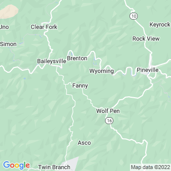 Fanrock,wv- map, population, zip codes, coutnies, area codes, time zones, households, income, news, weather, metro areas, local time at localistica.com