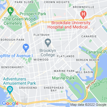 11210 Brooklyn,NY- map, population, zip codes, coutnies, area codes, time zones, households, income, news, weather, metro areas, local time at localistica.com