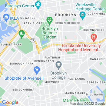 11226 Brooklyn,NY- map, population, zip codes, coutnies, area codes, time zones, households, income, news, weather, metro areas, local time at localistica.com