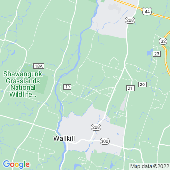 12589 Wallkill,NY- map, population, zip codes, coutnies, area codes, time zones, households, income, news, weather, metro areas, local time at localistica.com