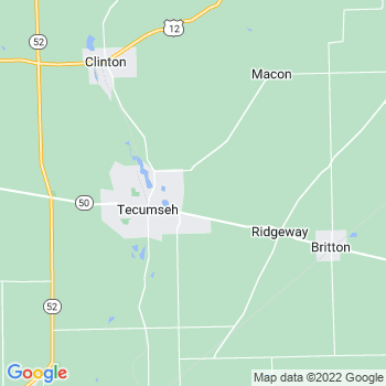 Tecumseh,mi- map, population, zip codes, coutnies, area codes, time zones, households, income, news, weather, metro areas, local time at localistica.com