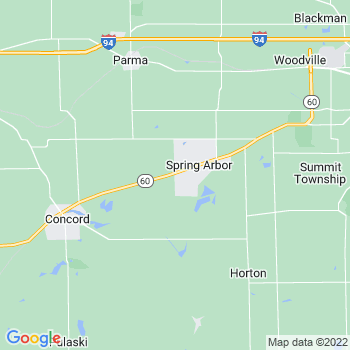 Spring Arbor,mi- map, population, zip codes, coutnies, area codes, time zones, households, income, news, weather, metro areas, local time at localistica.com