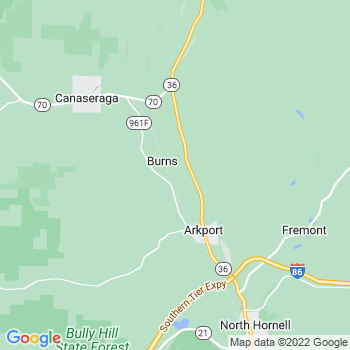 Arkport,ny- map, population, zip codes, coutnies, area codes, time zones, households, income, news, weather, metro areas, local time at localistica.com