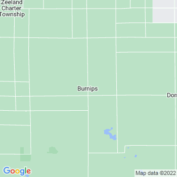 Burnips,mi- map, population, zip codes, coutnies, area codes, time zones, households, income, news, weather, metro areas, local time at localistica.com