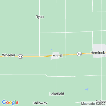 Merrill,mi- map, population, zip codes, coutnies, area codes, time zones, households, income, news, weather, metro areas, local time at localistica.com