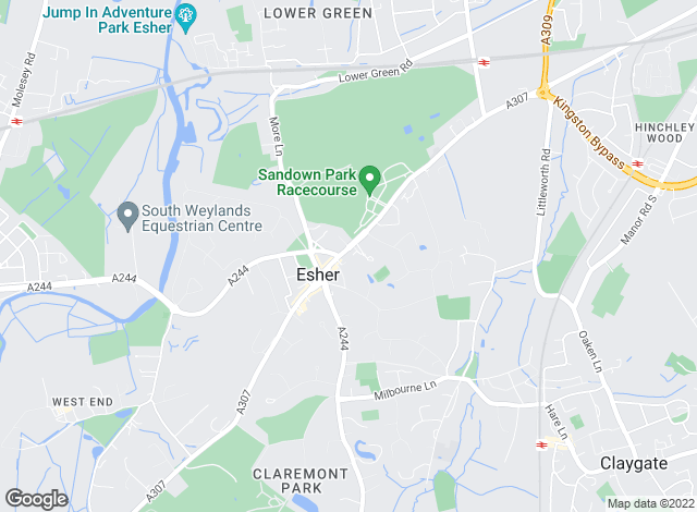 Map for Gascoigne-Pees, Esher