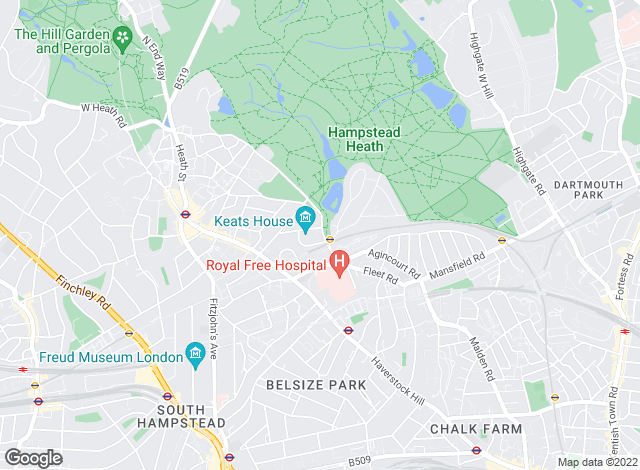 Map for Salter Rex, Hampstead