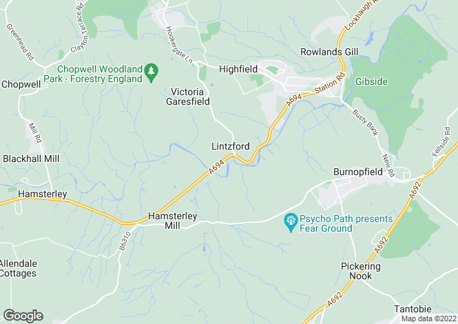 Map for Lintzford,