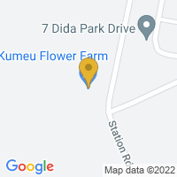 Flower delivery to Kumeu,NZ