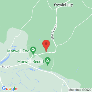 Clay Pigeon Shooting Winchester, Hampshire Location Map