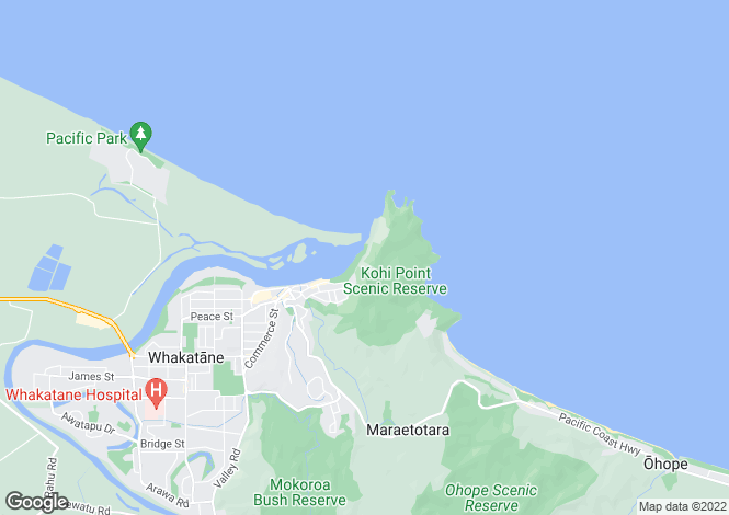 Map for Bay of Plenty, Whakatane