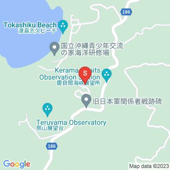 トカシクビーチと阿波連を結ぶ道の地図