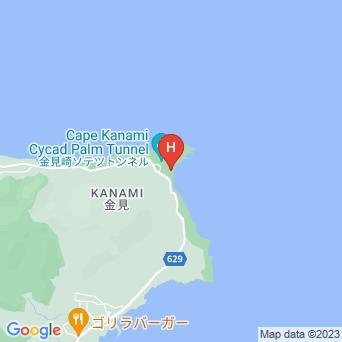 金見荘の地図