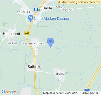 31555 Suthfeld