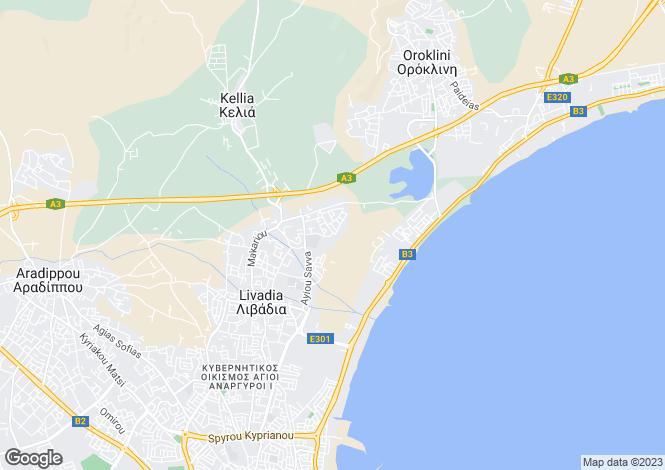 Map for Larnaca, Leivadia