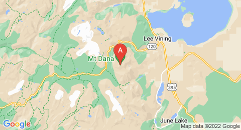 map of Mount Dana (United States of America)