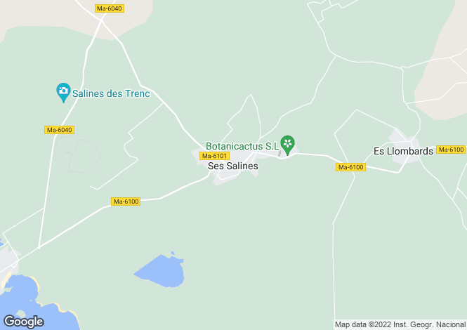 Map for Ses Salines, Mallorca, Balearic Islands