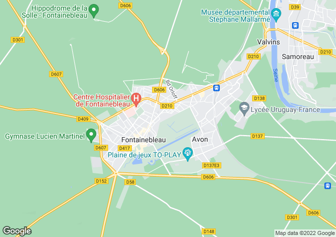 Map for FONTAINEBLEAU, Île-de-France