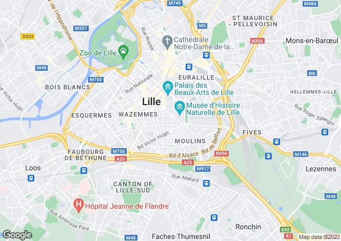 Map for LILLE, LILLE ,France
