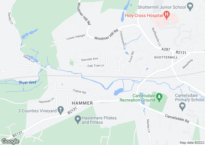 Map for Border Road, Haslemere