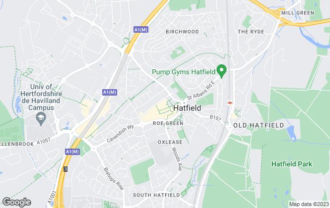 Map for Kings, Hatfield
