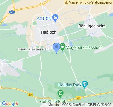 67454 Haßloch