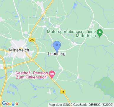 95666 Leonberg