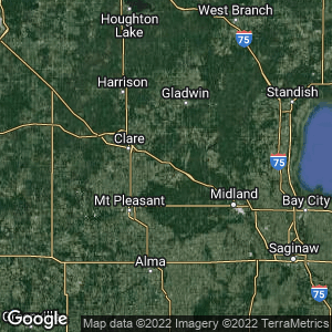 Static Map of Coleman, Michigan