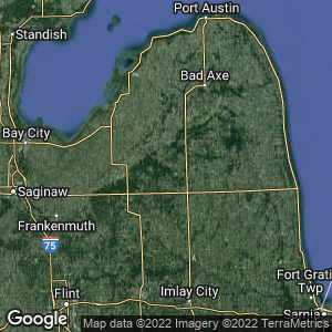 Static Map of Deford, Michigan