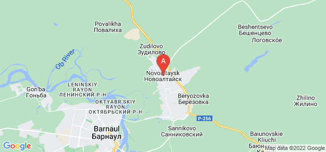 map of Novoaltaysk, Russia