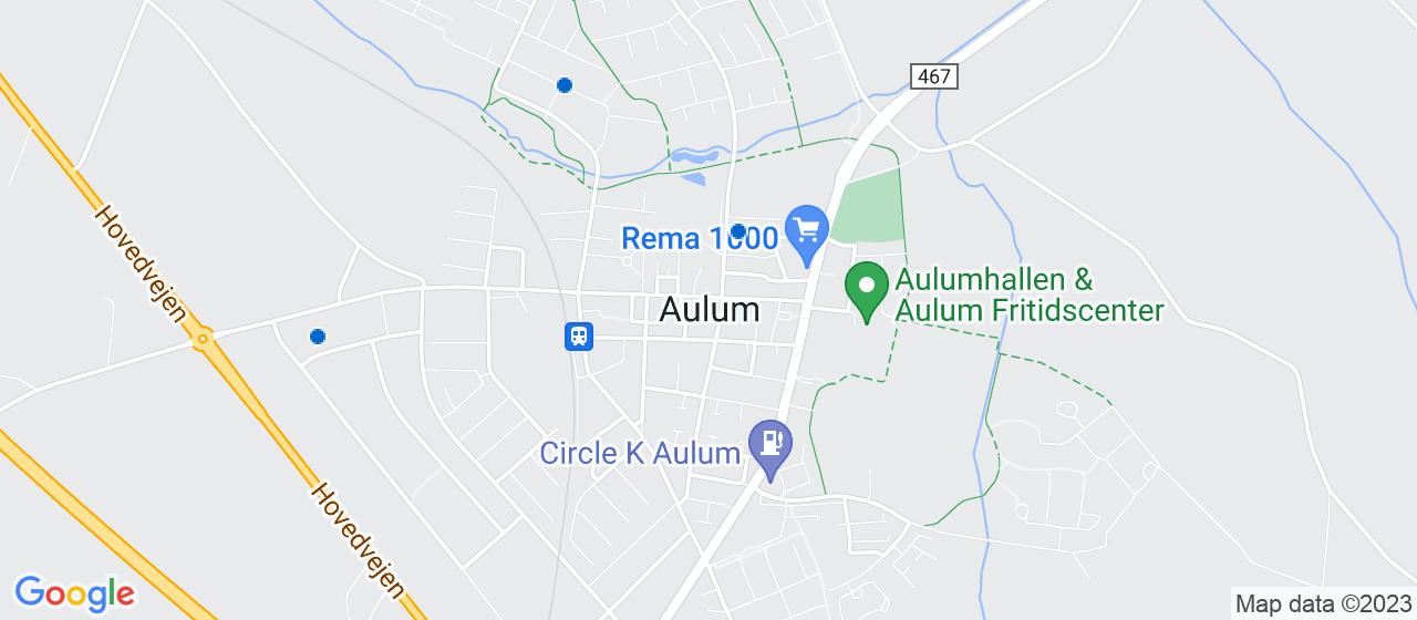 revisorfirmaer i Aulum