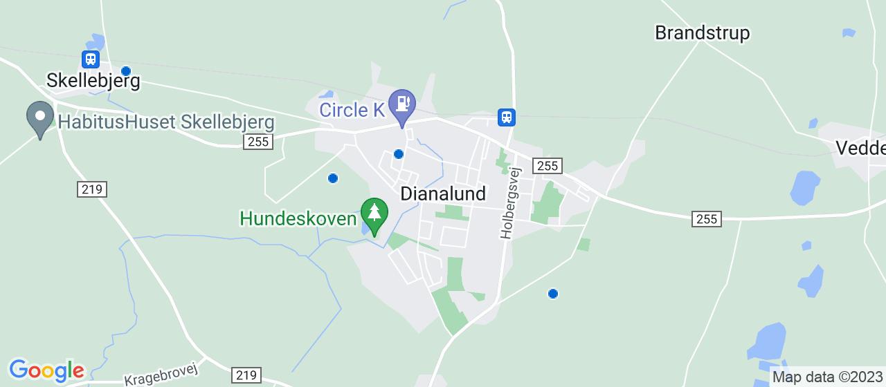 kloakfirmaer i Dianalund