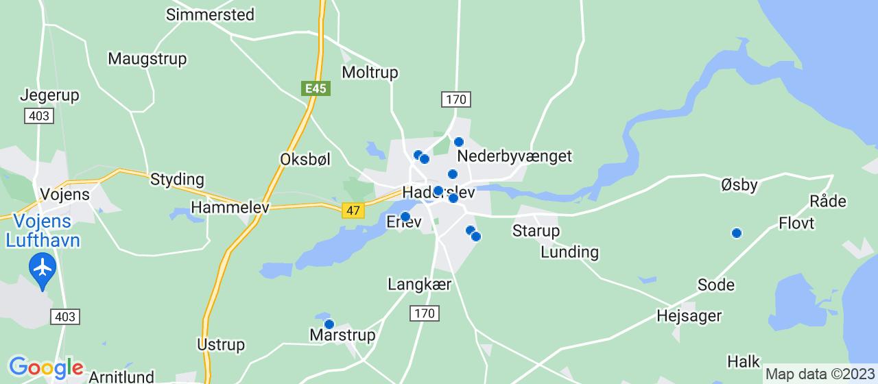 festmusiker i Haderslev