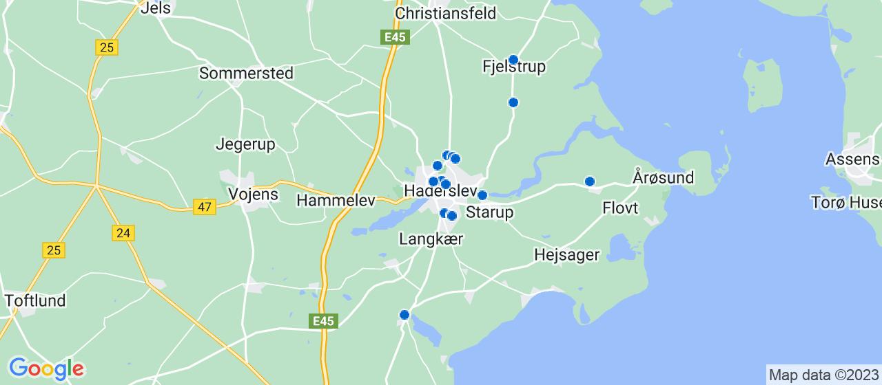 mekaniker firmaer i Haderslev