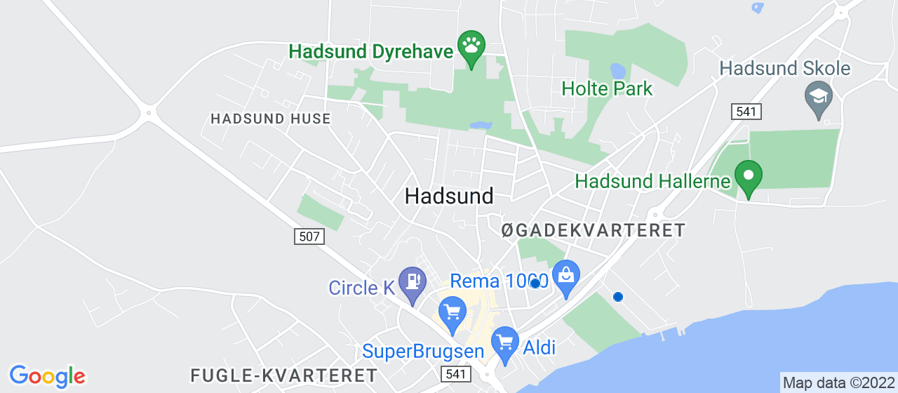 festmusiker i Hadsund