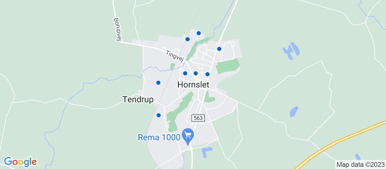 revisorfirmaer i Hornslet