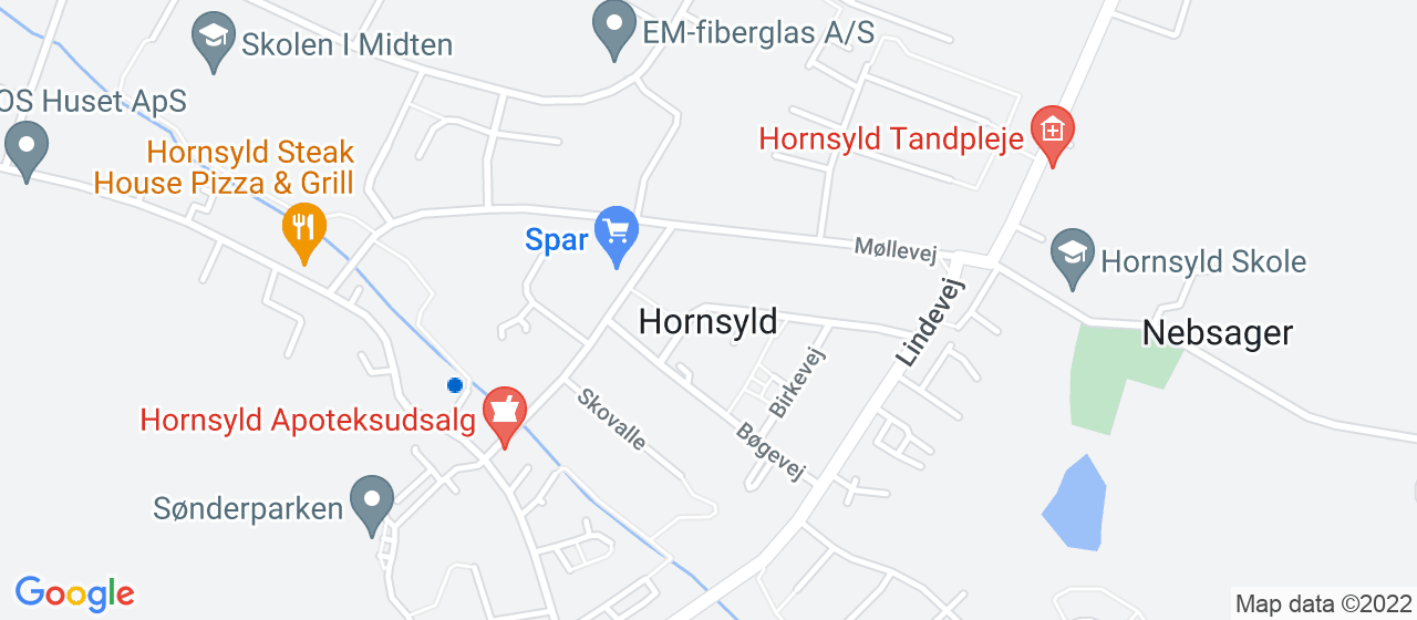 festmusiker i Hornsyld