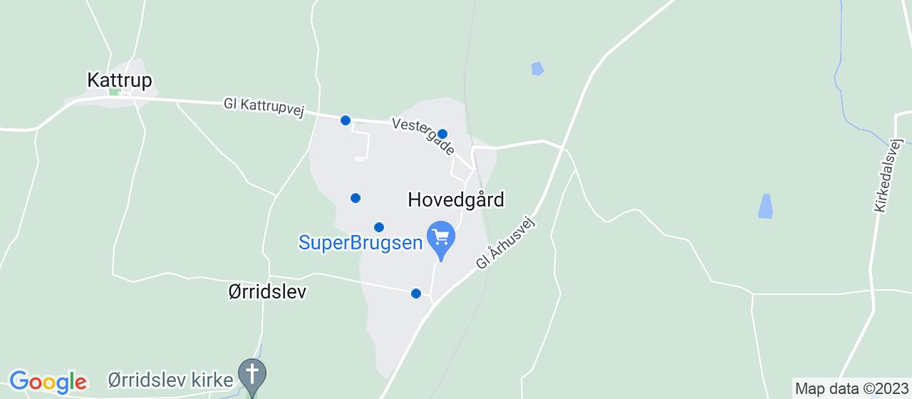 revisorfirmaer i Hovedgård