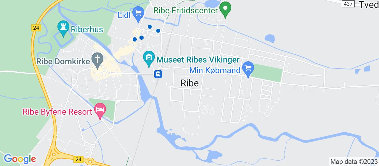 ejendomsmæglerfirmaer i Ribe