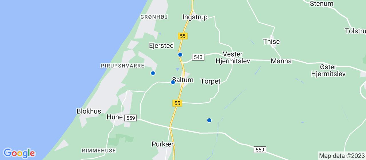 håndværkerfirmaer i Saltum