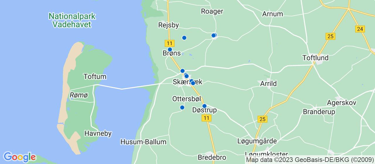 mekaniker firmaer i Skærbæk